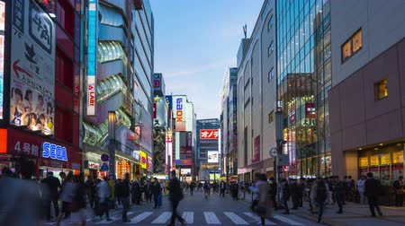 Tokyo, Japan %u2013 April 16, 2018: Time lapse of Akihabara Electric Town the famous place in Tokyo with crowd of people in Tokyo city, Japan