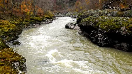 Autumn landscape with mountain river Stock Footage