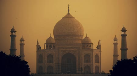 renowned : Taj Mahal scenic view in Agra, India. Stock Footage