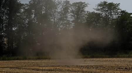 Dust devil or small tornado Стоковые видеозаписи