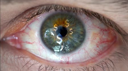 humans : Macro video of human eye with dollar sign