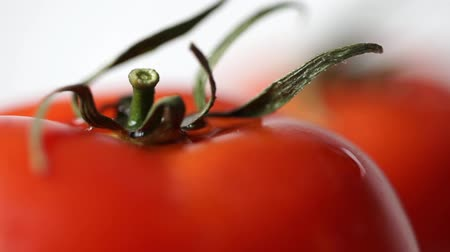 preserved cherries : Macro shot two fresh tomatoes on white backround Stock Footage