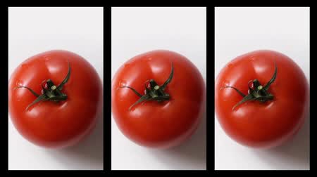 preserved cherries : Collage of fresh tomatoes rotation on white background Stock Footage
