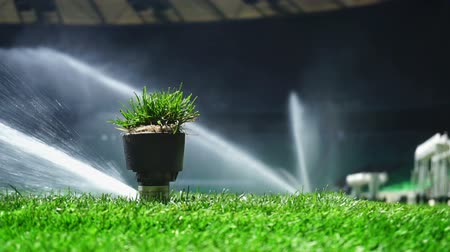 irrigate : Soccer or football field irrigation system of automatic watering grass. With original sound. Stock Footage