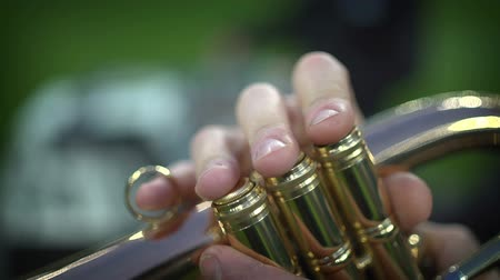 Detail of the players fingers on trumpet