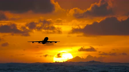 Aircraft flying over amazing tropical ocean at sunrise. Dominican Republic travel destinations. Wideo