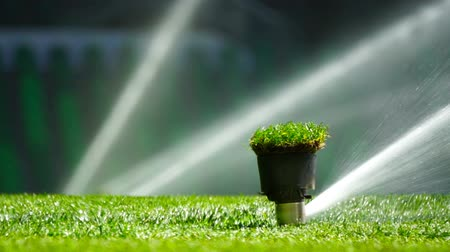 Soccer or football field irrigation system of automatic watering grass. Wideo