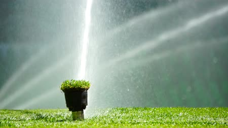sprayer : Soccer or football field irrigation system of automatic watering grass. Stock Footage