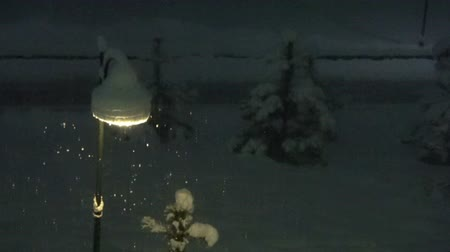 Winter night landscape scene of snow. Shining lights during snowfall. Wideo
