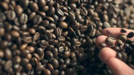 Closeup of coffee beans scatter out of males hand in slow motion Stock mozgókép
