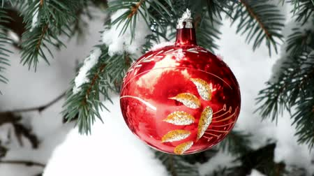 orbe : Decorate the Christmas tree ; Natural snow-covered Christmas tree decorated with beautiful red ornaments,video clip