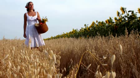 pszenica : woman walking field ;woman walking sunflower field with a basket full of apples,video clip