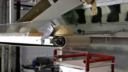 мучной : Dough for bread  ; dough to produce a loaf of bread on a treadmill in a bakery,video clip