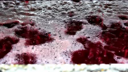 espumante : Winemaking ; Fresh squeezed grape juice ready for fermentation in winemaking,video clip