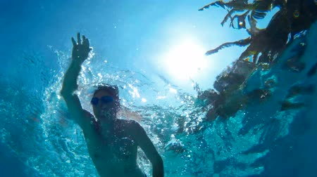 nadador : Front crawl swimmer ; Underwater footage of swimmers who swim front crawl style Vídeos