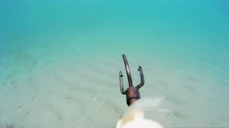 spear gun : Hunting scenes underwater ; Moment of firing harpoons for underwater fishing,video clip