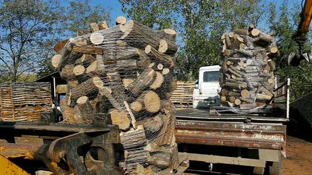 трейлер : Transportation of firewood ; Loading prepared firewood with forklift into the truck trailer,video clip Стоковые видеозаписи