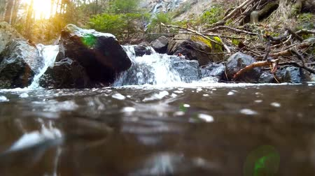 Mountain stream in the forest ; Clear mountain river flowing through rocky canyon and a make it beautiful waterfalls Wideo