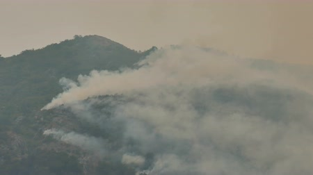 bush fire : Fire storm in the mountain forest ; The beginning of a fire in a coniferous forest at the top of the mountain Stock Footage