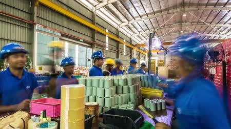 Blue Cap Workers In Packing Area - Timelapse - Tilt Stock mozgókép