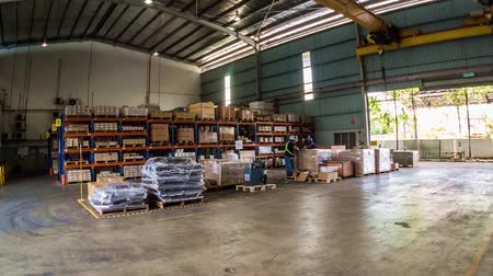 People Working With Lifter In Warehouse Storage - Timelapse - Tilt Stock Footage