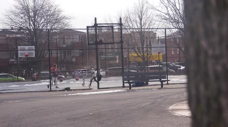 bronx : Men Playing Basketball Behind Fence And Tree Trunk - Slide - Right To Left Stock Footage