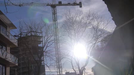 travelling : Sun Ray schijnt door boom in Black Light Near Construction Site - Static Stockvideo
