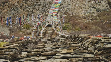 nepal : Coloured prayer flags flapping above stone stairs to Milarepa cave, Nepal Stock Footage