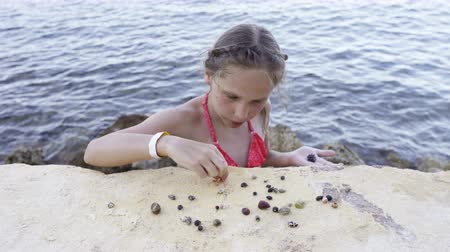 Little girl playing with Paguroidea on a beach