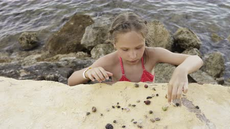 пляжная одежда : Little girl playing with Paguroidea on a beach