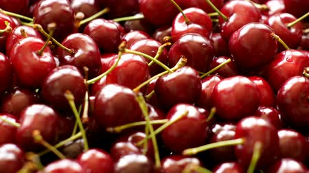 stalk : Background 4k video of ripe cherries rotating
