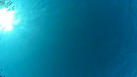 The view from the bottom from underwater, sun is on left Стоковые видеозаписи