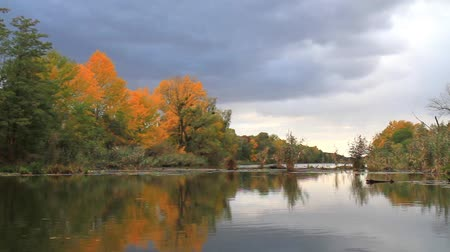 nuclear power : place for autumn fishing, river and forest Stock Footage