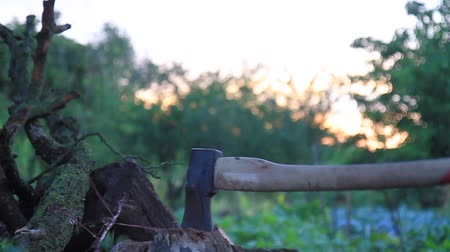 fejsze : man chops a log with an ax Stock mozgókép