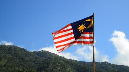 Malasia flag waving Stok Video