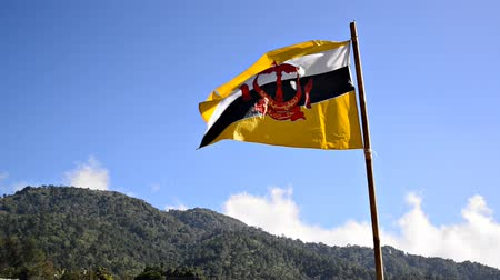 National flag of Brunai waving in the wind on hill.