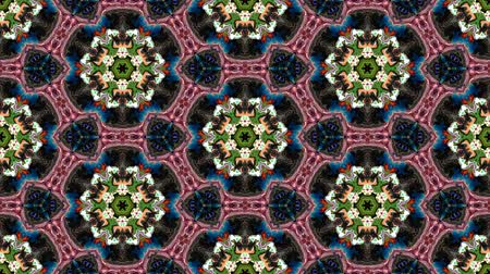 matematikai : Kaleidoscopic vj seamless loop Stock mozgókép