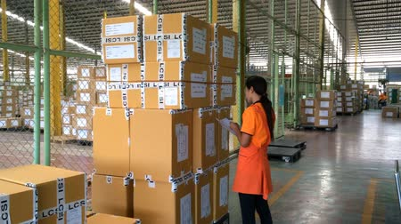 denetleme : women worker checking finished goods carton in warehouse. Stok Video