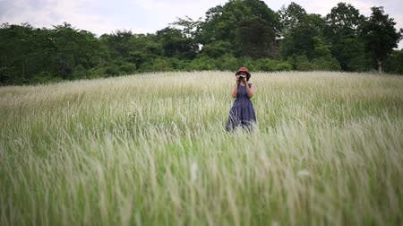 A woman standing and photographing in the meadow ,Thailand