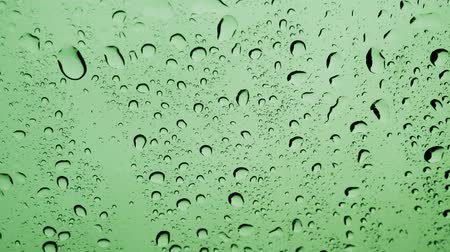 Rain water Drops On green Background.