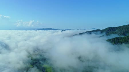 nan : Aerial view drone shot of flowing fog waves on mountain tropical rainforest,Bird eye view footage over the clouds Amazing nature background with clouds and mountain peaks