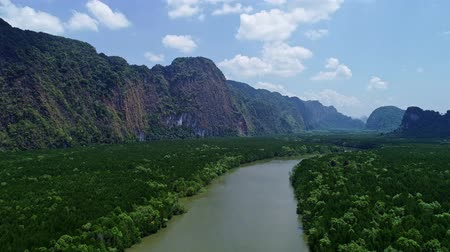 gyertyafa : Aerial view drone shot of beautiful natural scenery river in mangrove forest and high mountains in phang nga province Thailand