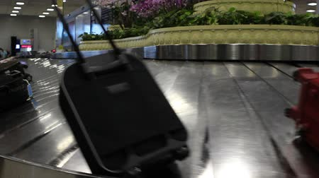 chegada : Man picking up suitcase from conveyor belt at airport Vídeos