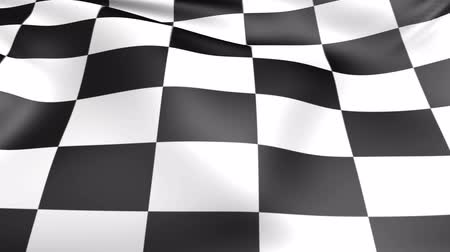 won : Checkered race flag. Seamless looped video background, footage