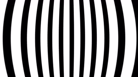 zebras : Abstract flowing wave optical wave illusion. Black and white lines motion pattern. Seamless loop background