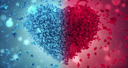 okvětní lístky : Animation of romantic flying red and blue rose flower petals in shape of love heart valentine wedding background. For St. Valentines Day, Mothers Day, wedding anniversary greeting cards, wedding invitation or birthday e-card. Seamless loop 4k