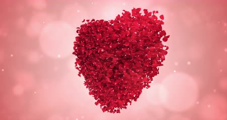 okvětní lístky : Rotating animation of romantic flying red rose flower petals in shape of lovely heart backdrop. For St. Valentines Day, Mothers Day, wedding anniversary greeting cards, wedding invitation or birthday e-card. Seamless loop 4k Dostupné videozáznamy