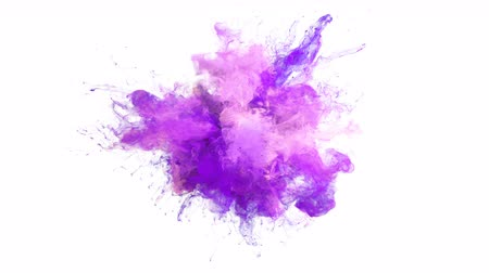 pop art background : Purple Pink Color Burst - colorful smoke explosion fluid particles alpha matte