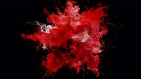 puder : Red Color Burst - colorful smoke explosion fluid particles alpha matte Wideo