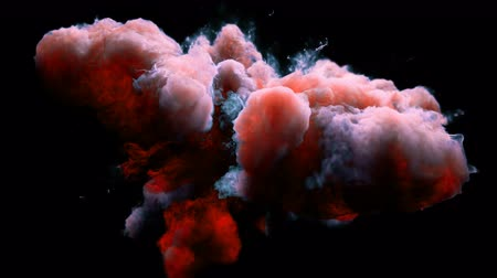 цветной : Pink Orange Color Burst - colorful smoke powder explosion fluid ink particles slow motion alpha matte isolated on black Стоковые видеозаписи
